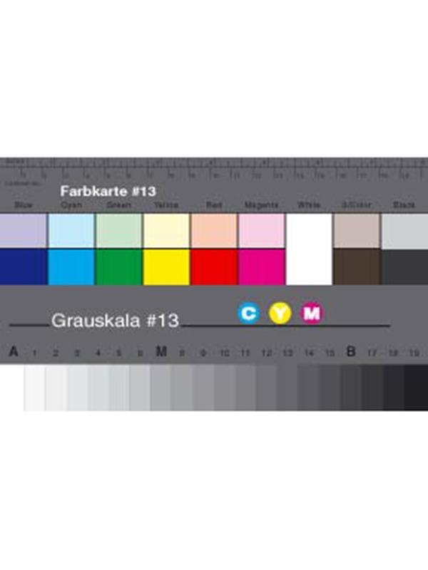 Danes Picta Cuña Pequeña Gris + Separación de Colores BS13 -