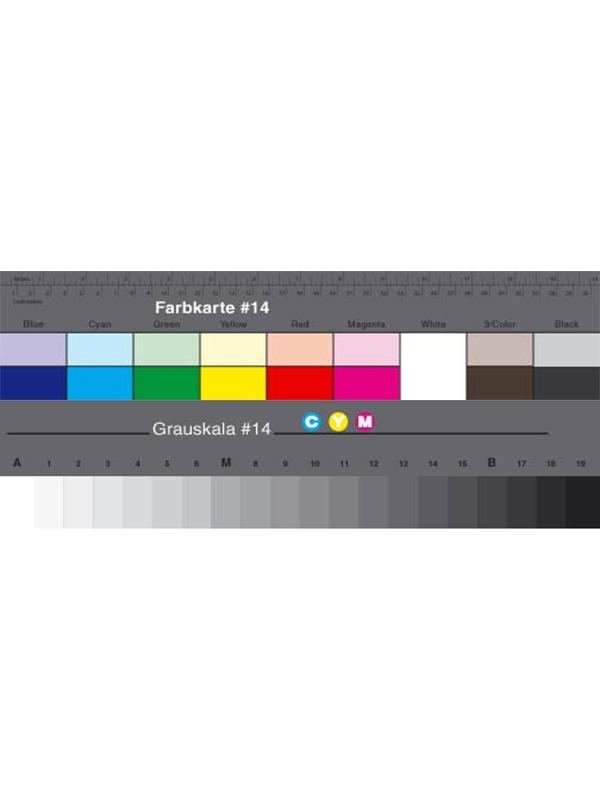 Danes Picta Cuña Larga Gris + Separación de Colores BS14 -
