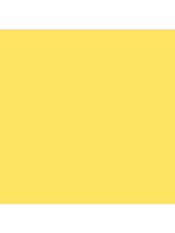 Colorama Fondo de Papel DANDELION sulphure 16 2.7 x 11m -