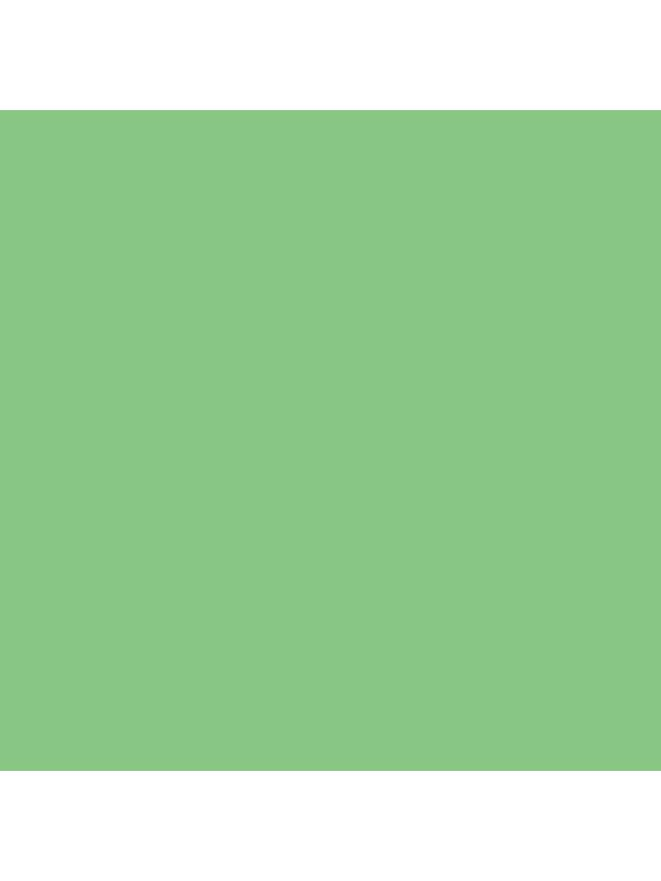 Colorama Fondo de Papel SUMMER GREEN 59 2.72 x 11m -