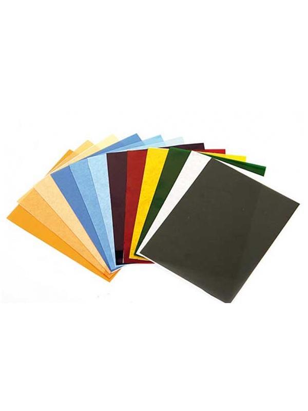 Lastolite Juego de 10 Gelatinas: Calido, Frio, Color, Neutro -
