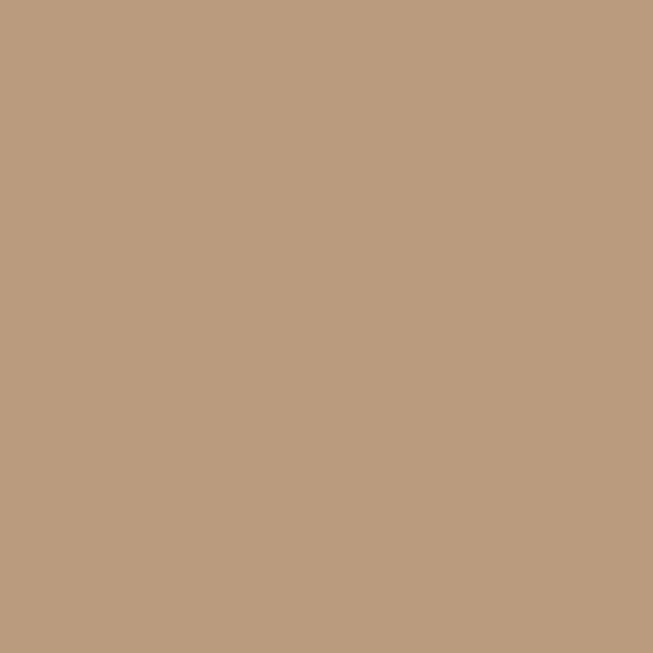 Colorama Fondo de Papel COFEE 11 2.72 x 11m