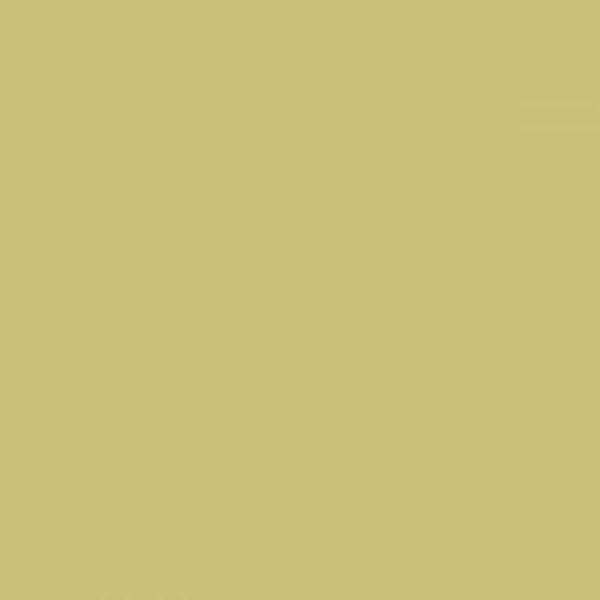 Colorama Fondo de Papel FERN 12 2.72 x 11m